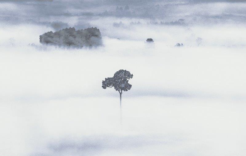 carta da parati acuerellata paesaggio campagna - Nanni Giancarlo